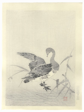 Goose and Reeds by Shin-hanga & Modern artist (not read)