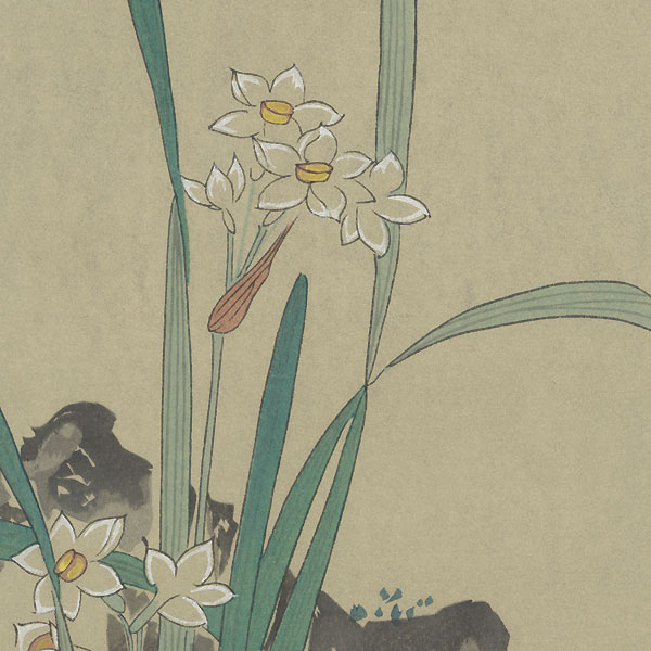Narcissus and Rock by Shin-hanga & Modern artist (unsigned)
