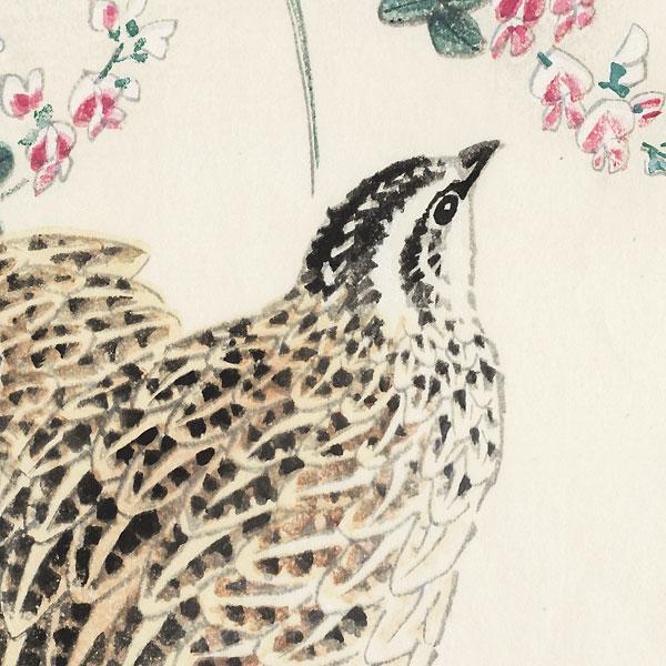 Quail and Lespedeza by Eiichi Kotozuka (1906 - 1979)