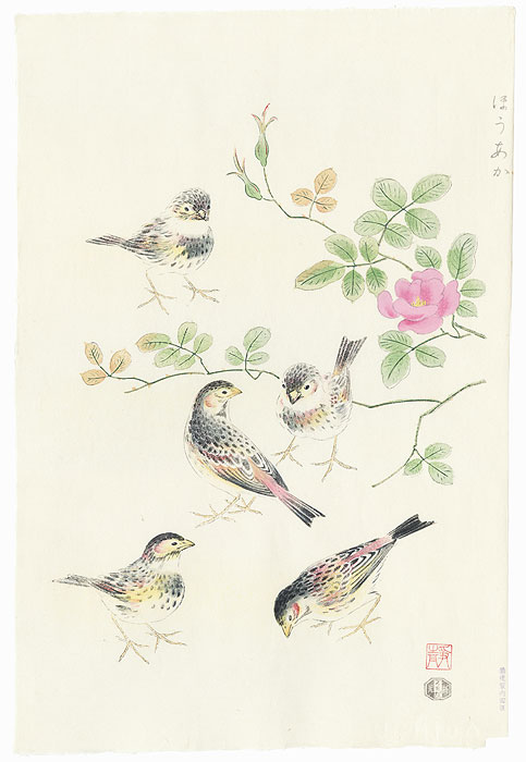 Rosy Finch and Wild Rose by Shizuo Ashikaga (1917 - 1991)