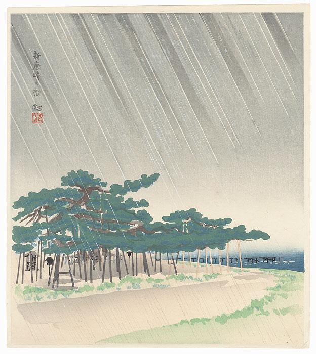 Pine Tree at Shin Karasaki by Tokuriki Tomikichiro (1902 - 1999)