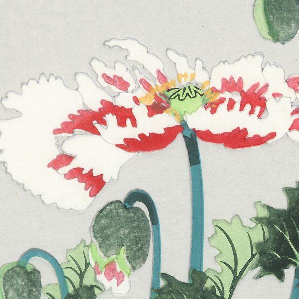 Poppies by Shin-hanga & Modern artist (not read)