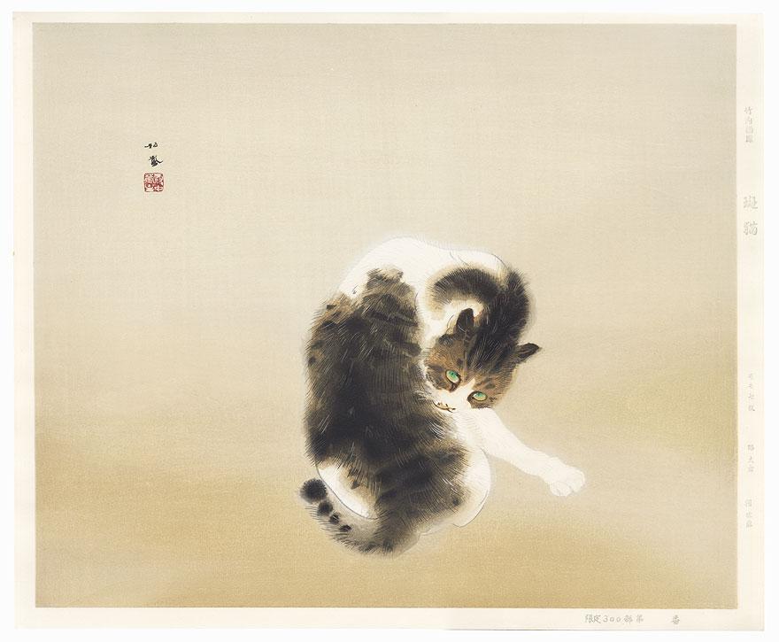 Tabby Cat by Takeuchi Seiho (1864 - 1942)