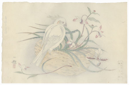 Cockatoo on a Basket of Orchids by Ichiro (dates unknown)