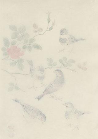 Rosy Finch and Wild Rose by Shizuo Ashikaga (1917 - 1991)