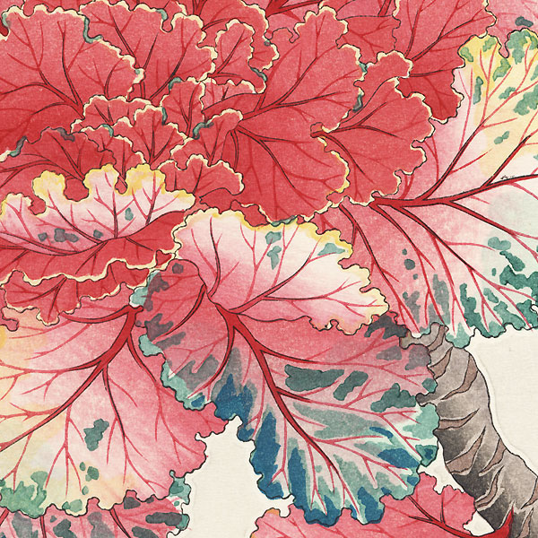 Ornamental Cabbage by Kawarazaki Shodo (1889 - 1973)