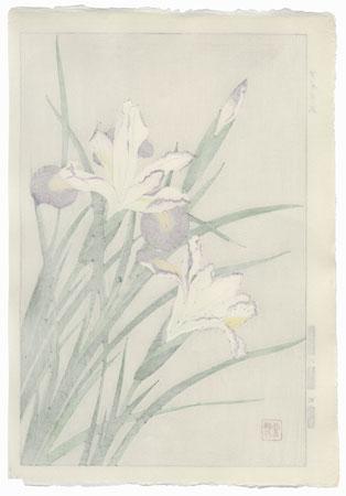 White and Purple Irises by Kawarazaki Shodo (1889 - 1973)