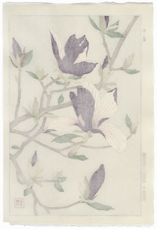 Magnolia by Kawarazaki Shodo (1889 - 1973)