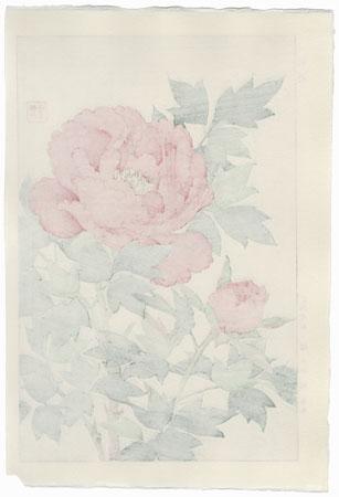 Red Peony and Bud by Kawarazaki Shodo (1889 - 1973)