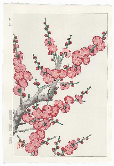 Red Plum by Kawarazaki Shodo (1889 - 1973)