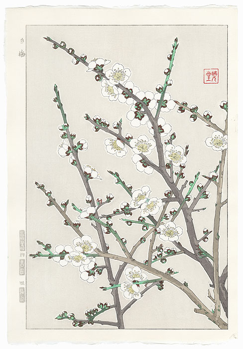 White Plum by Kawarazaki Shodo (1889 - 1973)