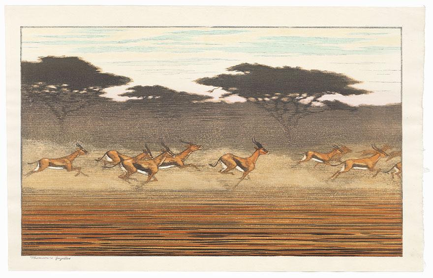 Thomson's Gazelles by Toshi Yoshida (1911 - 1995)