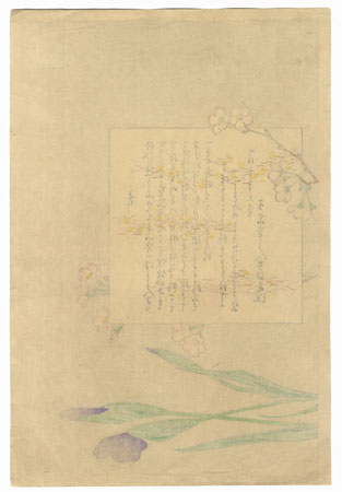 Offered in the Fuji Arts Clearance - only $24.99! by Miyagawa Shuntei (1873 - 1914)