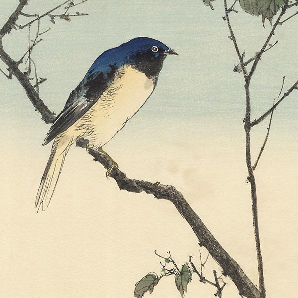 A Clearance Opportunity! Shin-hanga & Modern era Original by Okuharu Seiko (1837 - 1913)