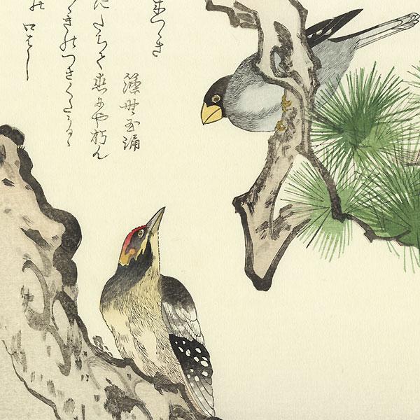 Grosbeak and Woodpecker by Utamaro (1750 - 1806)
