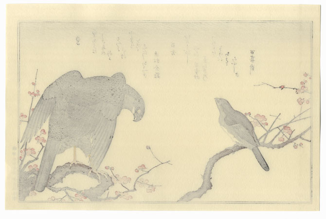 Hawk and Bull-headed Shrike by Utamaro (1750 - 1806)