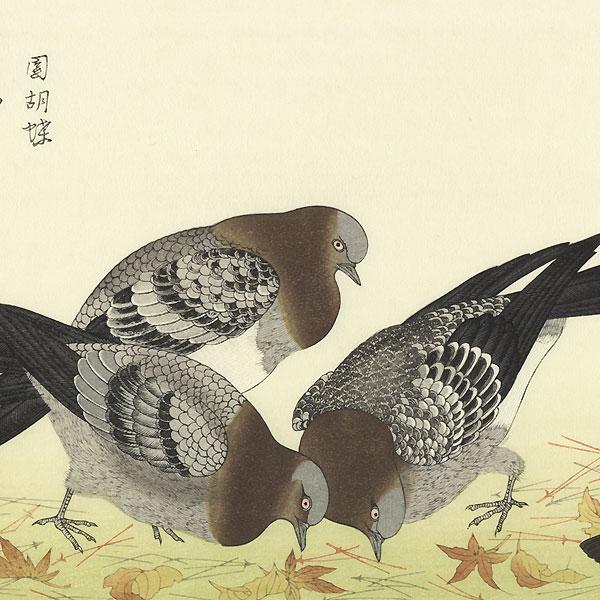 Sparrows and Pigeons by Utamaro (1750 - 1806)