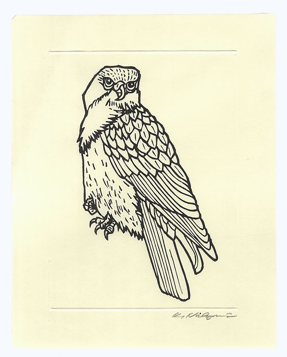 Falcon by Contemporary artist (not read)
