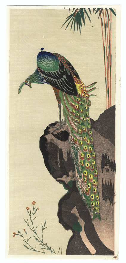 Peacock by Yamaguchi Soken (1759 - 1818)