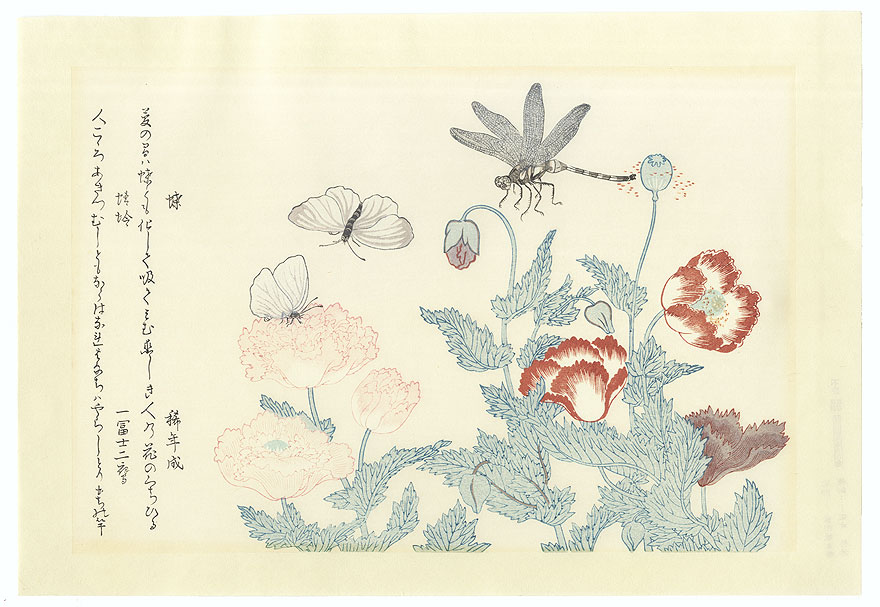 Butterfly and Dragonfly  by Utamaro (1750 - 1806)