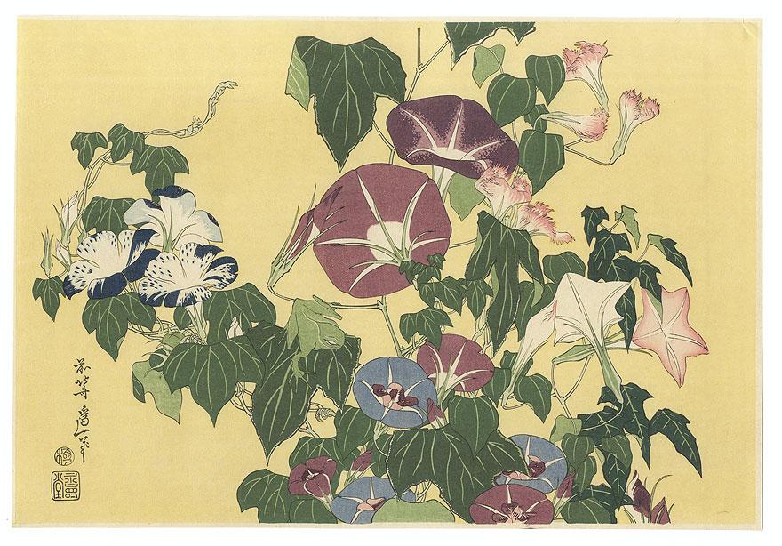 Morning Glory and Frog by Hokusai (1760 - 1849)