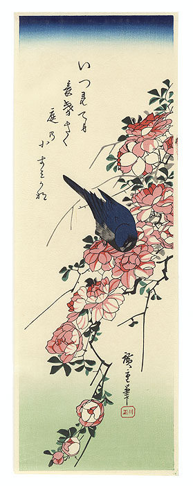 Blue Bird and Roses by Hiroshige (1797 - 1858)