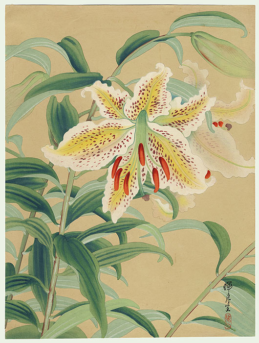 white tiger lilies. White Tiger Lilies by Zuigetsu