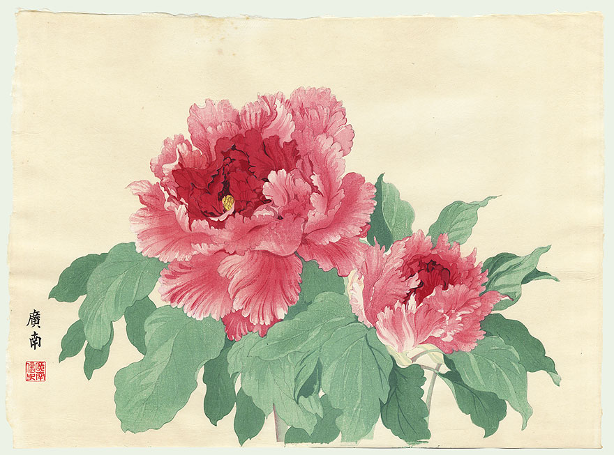 1000+ images about japanese peonies on Pinterest | Peonies ...