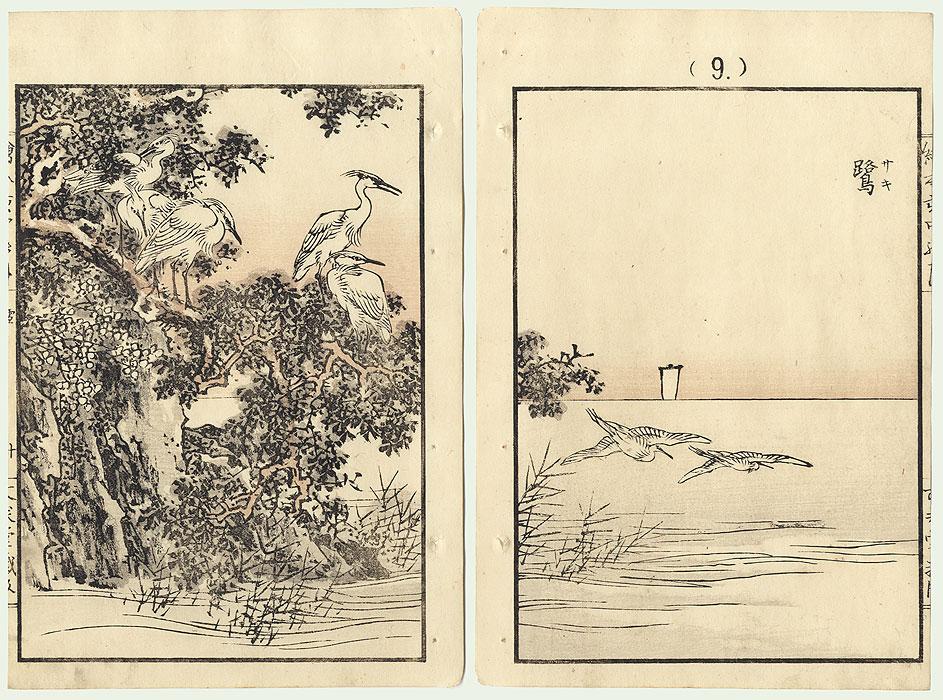 Snowy Herons by Kono Bairei (1844 - 1895)