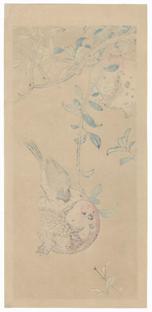 Sparrow and Pomegranate by Jo (Hashimoto Yuzuru) (active 1920s - 1930s)