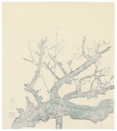 Blossoming Plum Branches by Contemporary artist (not read)