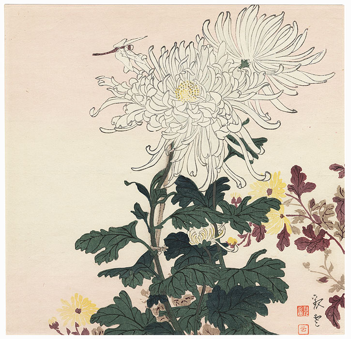 Dragonfly And Chrysanthemums By Shin Hanga Modern Artist Not Read