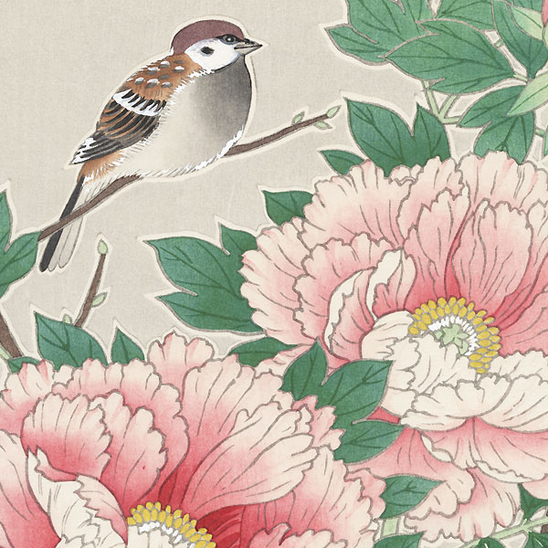 Sparrow on a Pink Peony by Shin-hanga & Modern artist (not read)