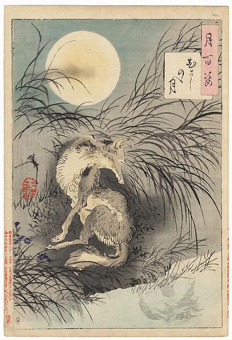 Musashi Plain Moon by Yoshitoshi (1839 - 1892)