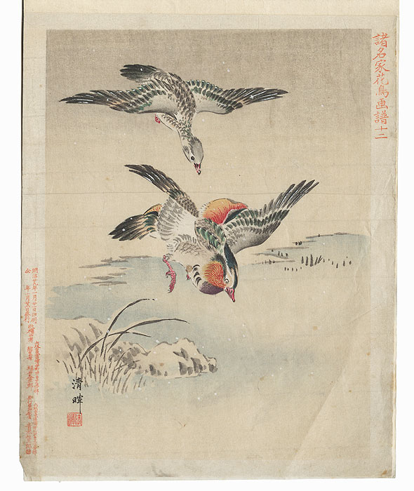 Complete Book with 12 Woodblock Prints of Birds, 1896 by Meiji era artists (not read)