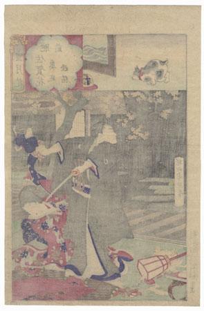 Hizen, Flowers of Saga, Cat Monster of the Inner Garden, No. 15 by Chikanobu (1838 - 1912)