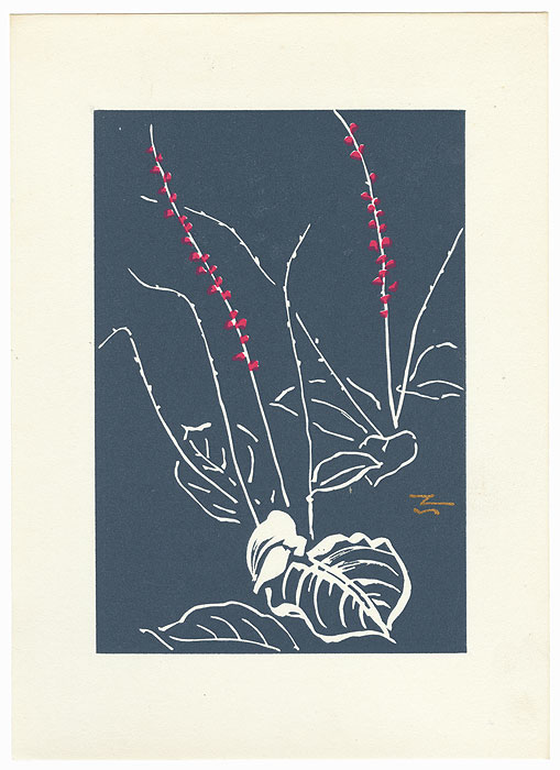Bright Blossoms and White Leaves with Gray Background by Tanaka Kichinosuke (1897 - ?)