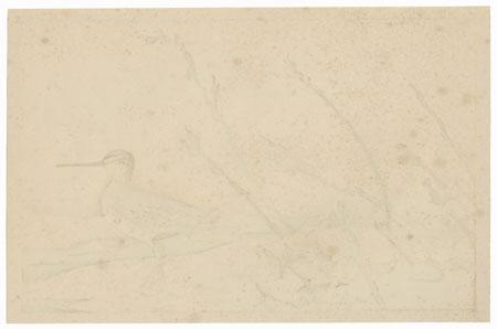 Rosegold Pussywillow Motif by Rakusan Tsuchiya (1896 - 1976)
