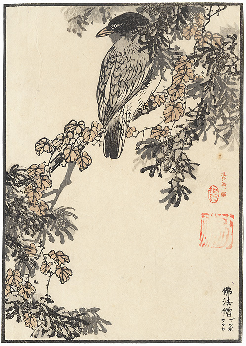Bird Perched on a Branch by Bairei (1844 - 1895)