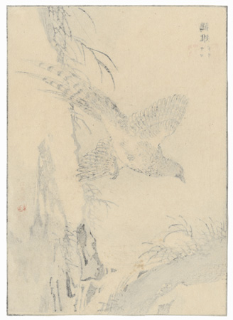 Pheasant in Flight by Bairei (1844 - 1895)