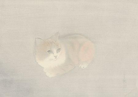 Kitten by Hasegawa Seicho (1916 - 2004)