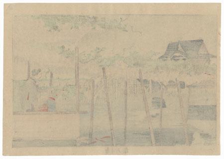 Wisteria at Kameido Tenjin Shrine by Kiyochika (1847 - 1915)