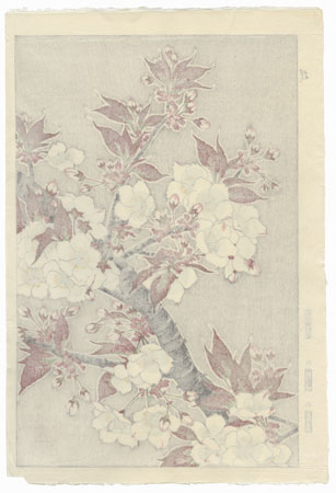Cherry by Kawarazaki Shodo (1889 - 1973)