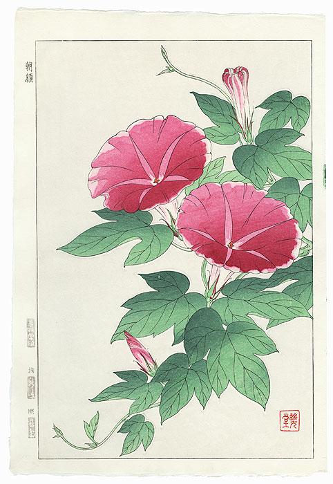 Pink Morning Glories by Kawarazaki Shodo (1889 - 1973)