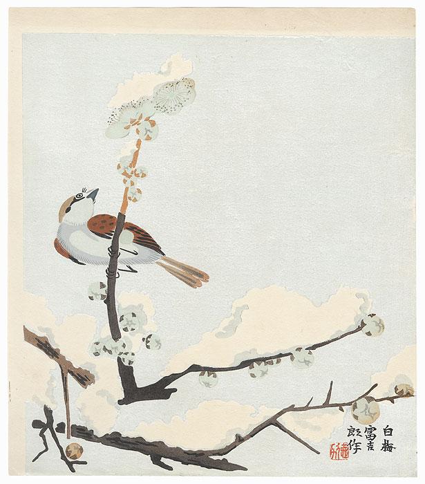 White Plum by Tokuriki (1902 - 1999)
