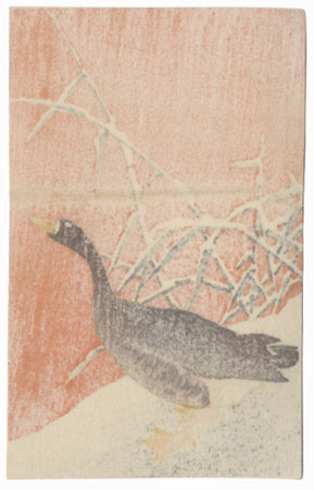 White-fronted Goose in Snow by Ohara Shoson (1877 - 1945)