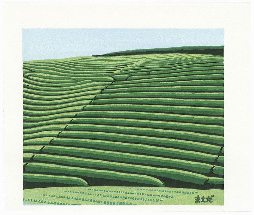Fields by Takao Sano (born 1941)