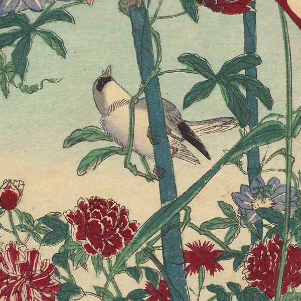 Bird, Clematis, and Butterfly by Meiji era artist (unsigned)