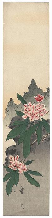 Blossoms Tanzaku Print by Shin-hanga & Modern artist (unsigned)