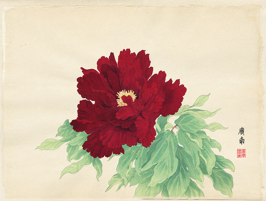 Imperial Exhibition Peony by Tanigami Konan (1879 - 1928)